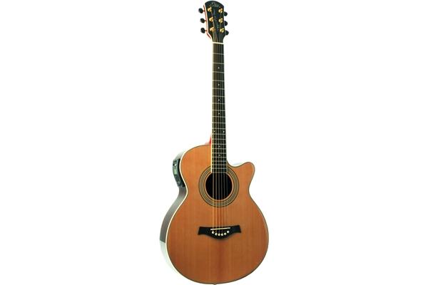 Riccardo Zappa Signature 6 Strings
